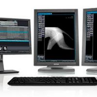 Aparelho de raio x digital veterinário